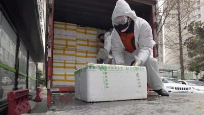 拼多多100吨蔬果直送武汉4家医院食堂 保障4600名医护一个月所需