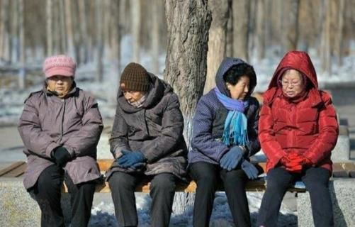 人数平稳增长,预计超5亿人,提前进入老年化