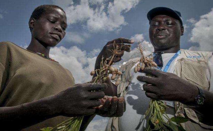 社会高速发展的背后,仍有群体处于饥饿形势