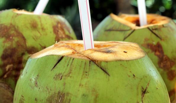 """椰树集团申请""""国宴饮料""""商标被驳回!"""